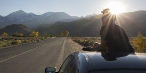 dude-in-car-road-trip